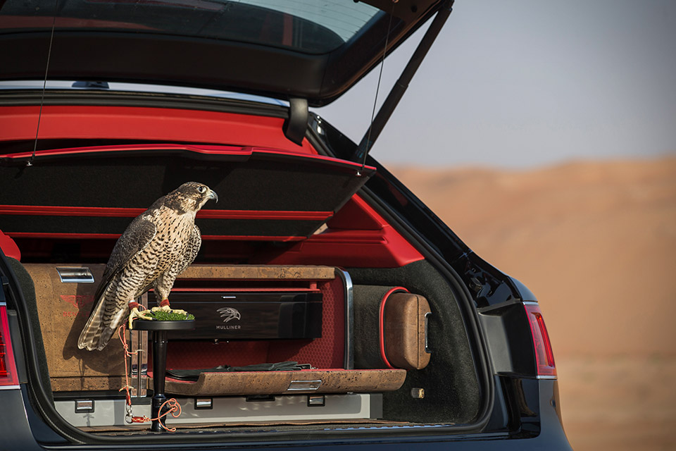 bentley-bentayga-falconry-1